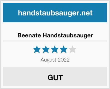 Beenate Handstaubsauger Test
