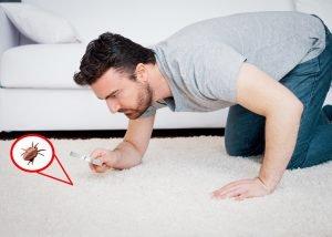 Tipps gegen Hausstaubmilben